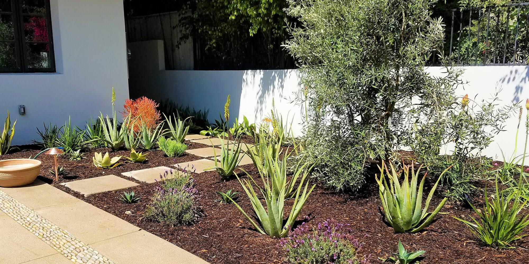 La Canada, California Landscape Installation