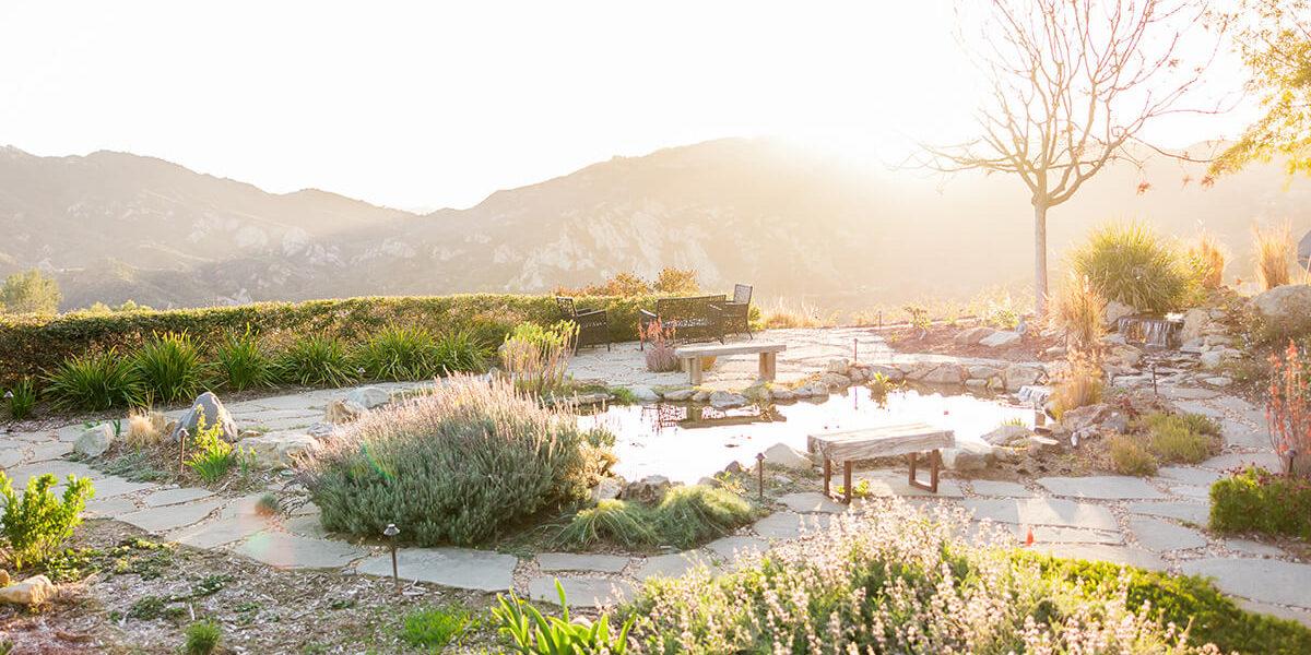 Encino, California Landscaping Services