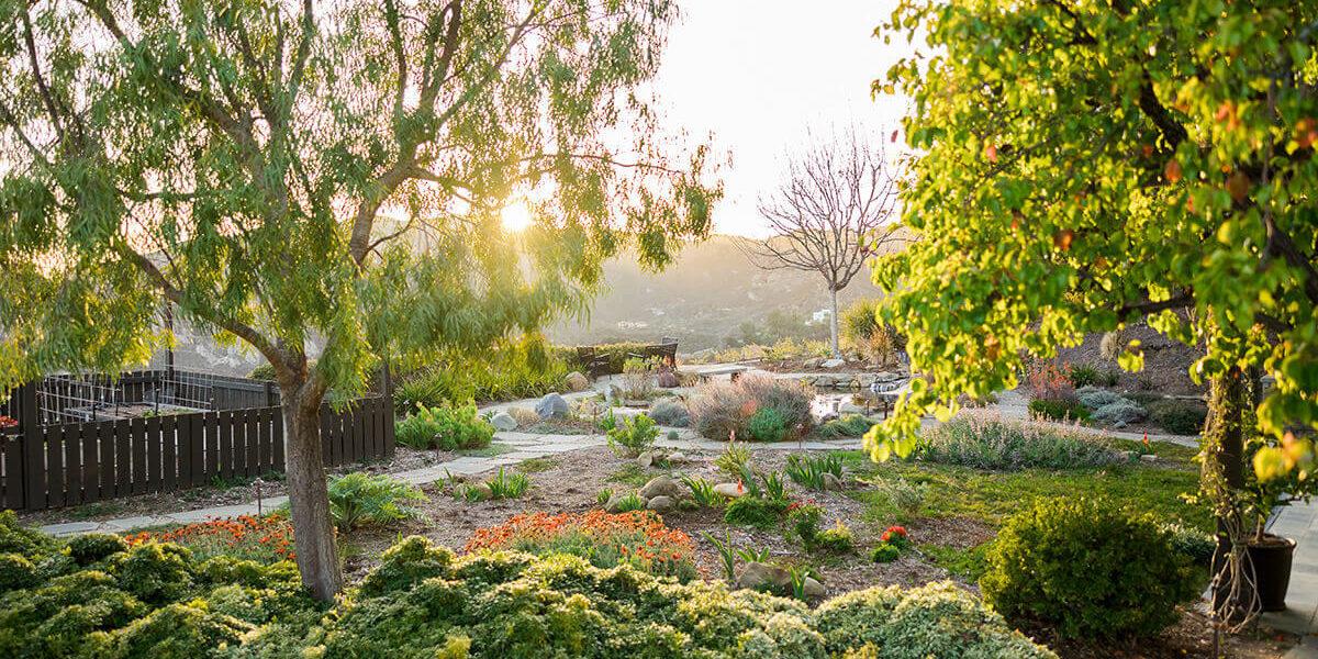 Studio City, CA Outdoor Living